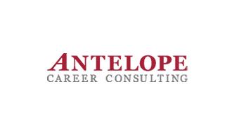 アンテロープキャリアコンサルティング株式会社の企業サイトのSEO内部設計、コンテンツの企画作成をサポート